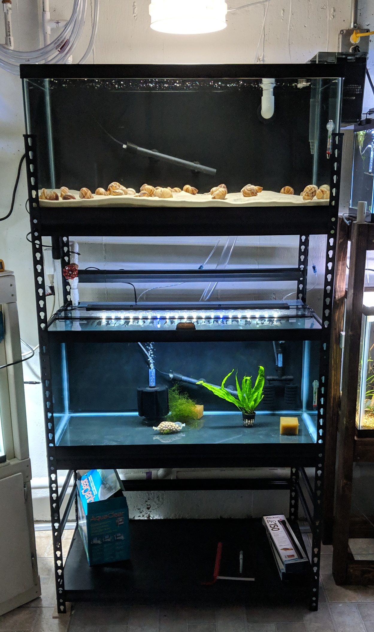 Aquarium Rack For Two 40 Gallon