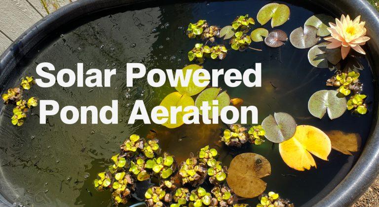 Easy DIY Solar Pond Air Pump