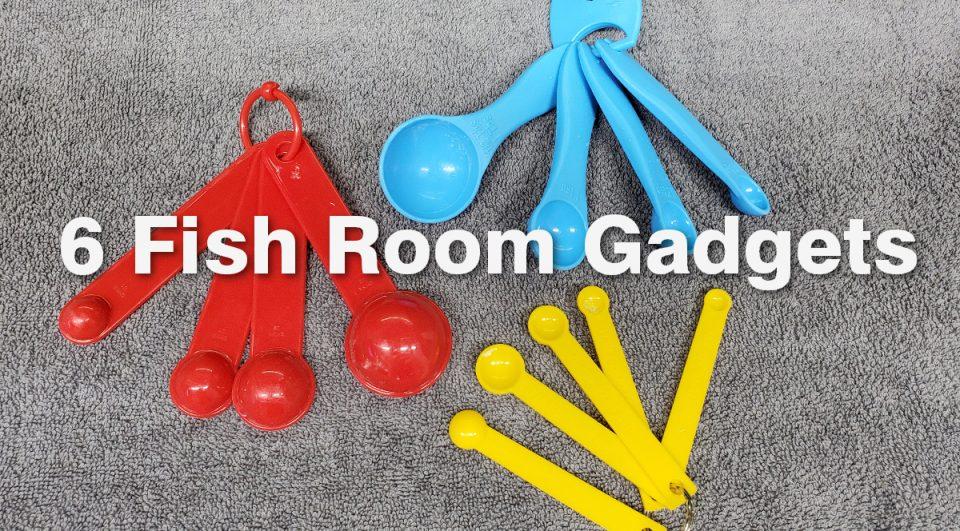Fish Room Gadget Header