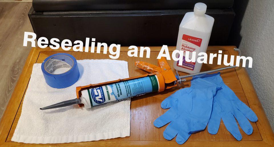 Resealing Aquarium Header