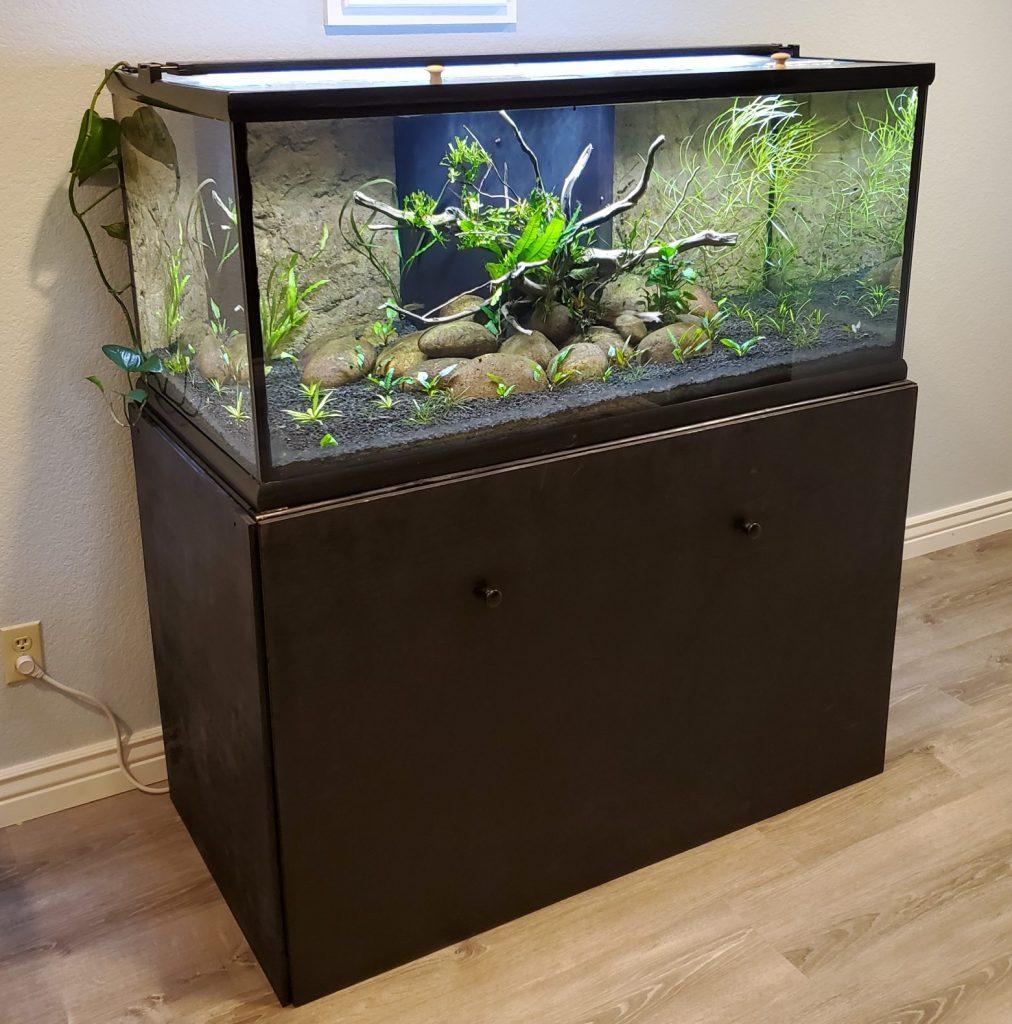 100 Gallon Tank on DIY Stand