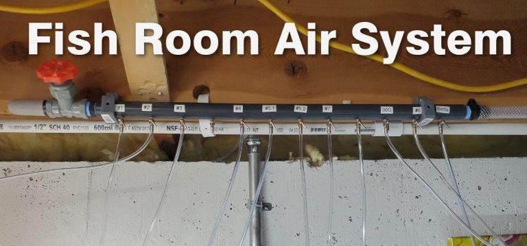 Fish Room Linear Piston Central Air Pump Setup